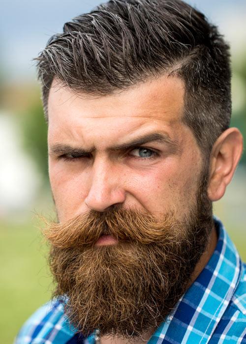 Bear-Beard-