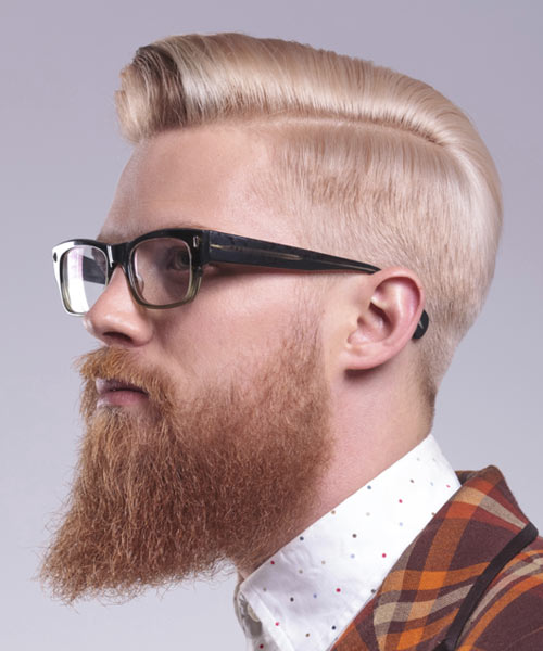 Stupendous 10 Beard Styles For 2016 Short Hairstyles Gunalazisus