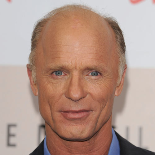 Hairstyles For Balding Men 50 classy haircuts and hairstyles for balding men Ed Harris Power Donut