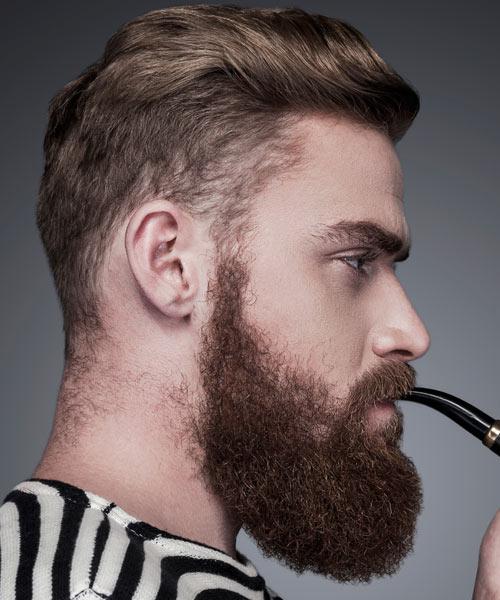 Phenomenal 10 Beard Styles For 2016 Short Hairstyles Gunalazisus