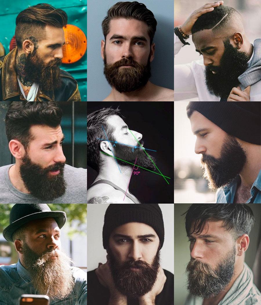 Terrific 9 Full Beard Styles Short Hairstyles Gunalazisus