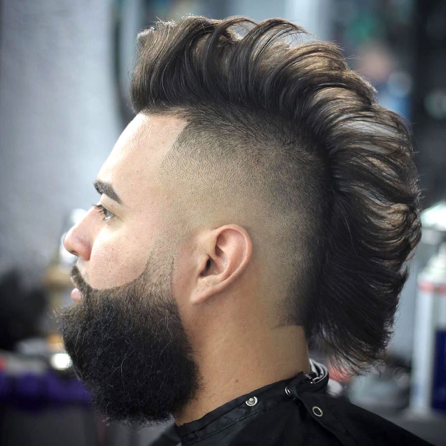stevetrujillo_and cool undercut hawk