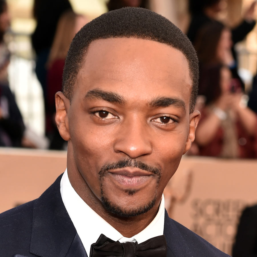 8. Anthony Mackie - 27 Celebrity Hairstyles For Men 2016 - Men's Hairstyle Trends