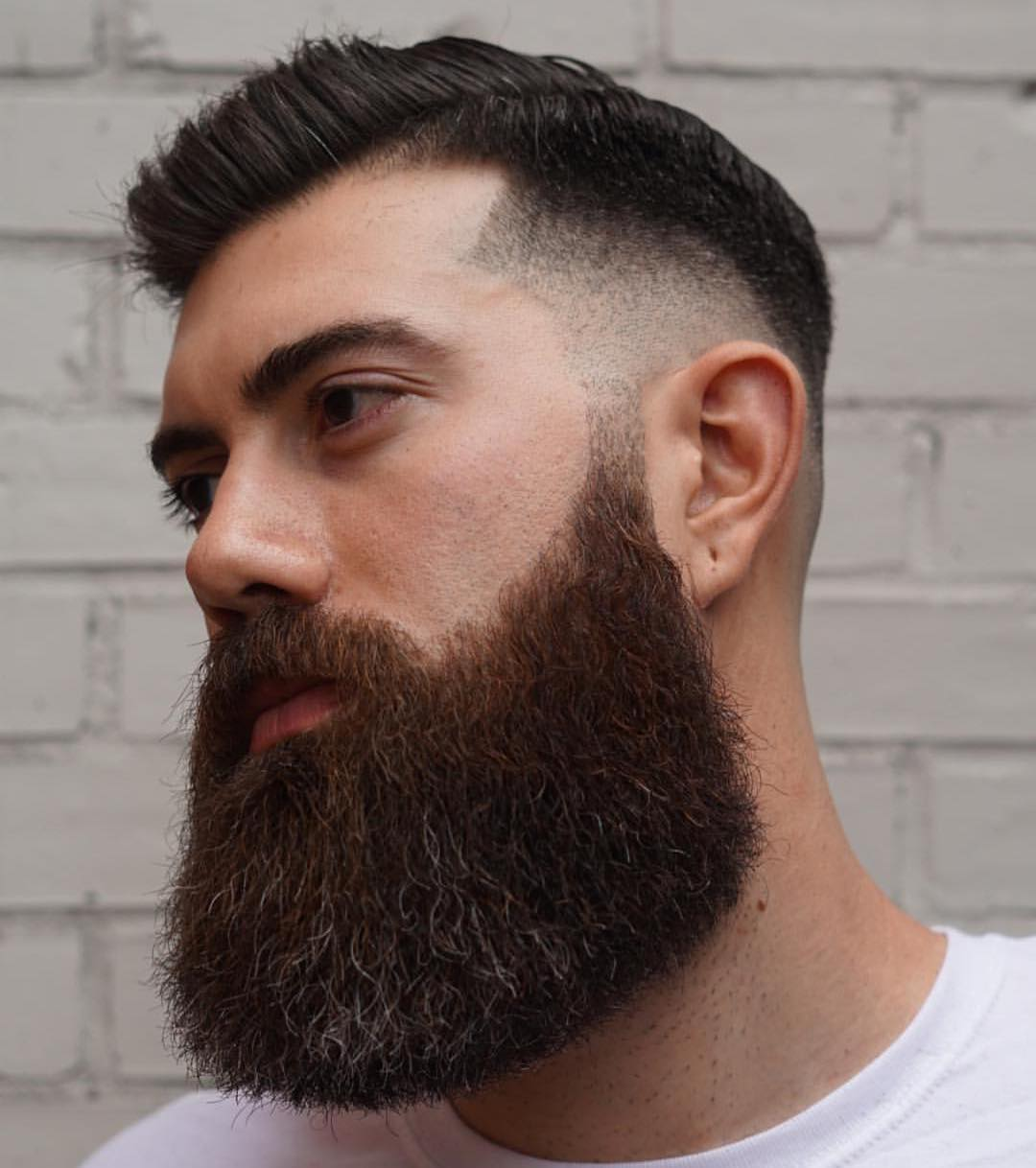 Rounded Beard