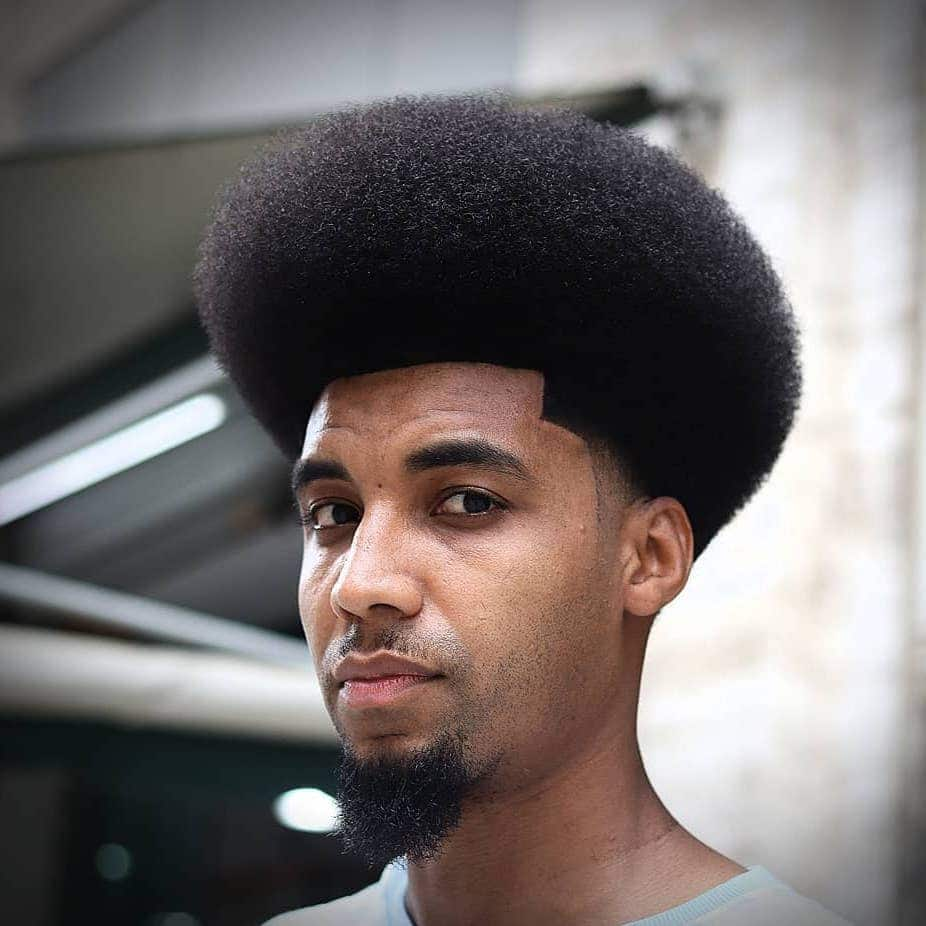 Afro temp fade haircut Back man
