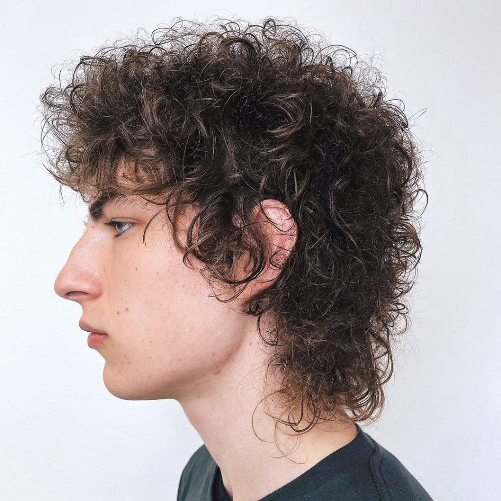 Bob Dylan curly shag haircut men